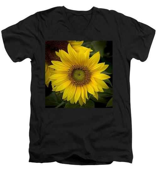 Beautiful Sunflower Men's V-Neck T-Shirt