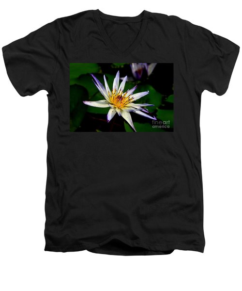 Beautiful Violet White And Yellow Water Lily Flower Men's V-Neck T-Shirt