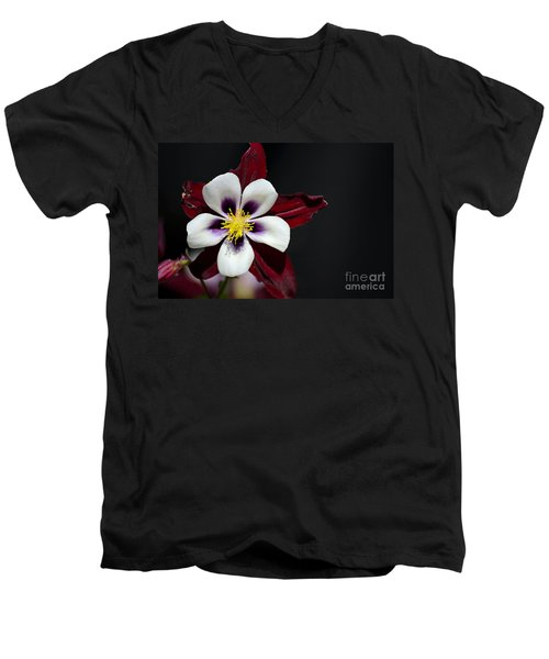 Beautiful White Petal Yellow Stamen Purple Shades Aquilegia Columbine Flower Men's V-Neck T-Shirt
