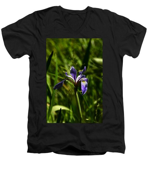 Beauty In The Grass Men's V-Neck T-Shirt