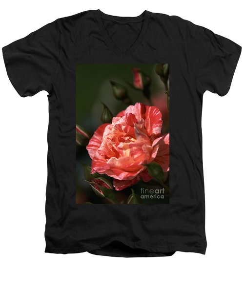 Men's V-Neck T-Shirt featuring the photograph Beauty Of Rose by Joy Watson