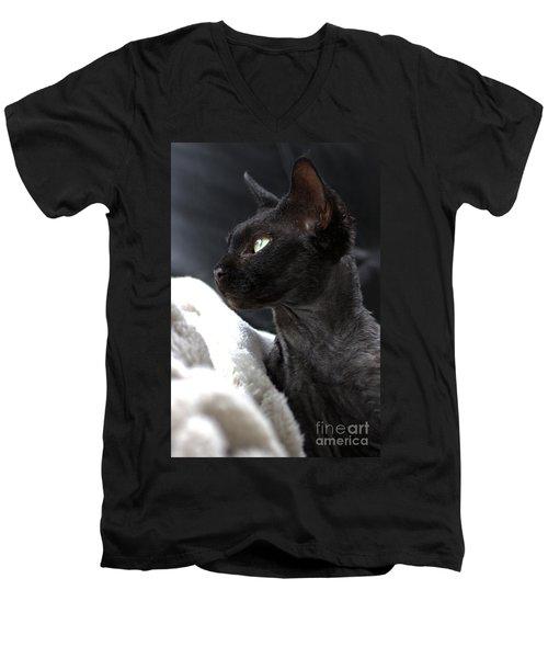 Beauty Of The Rex Cat Men's V-Neck T-Shirt