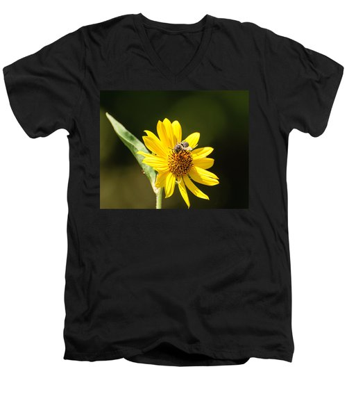 Bee Flower Men's V-Neck T-Shirt