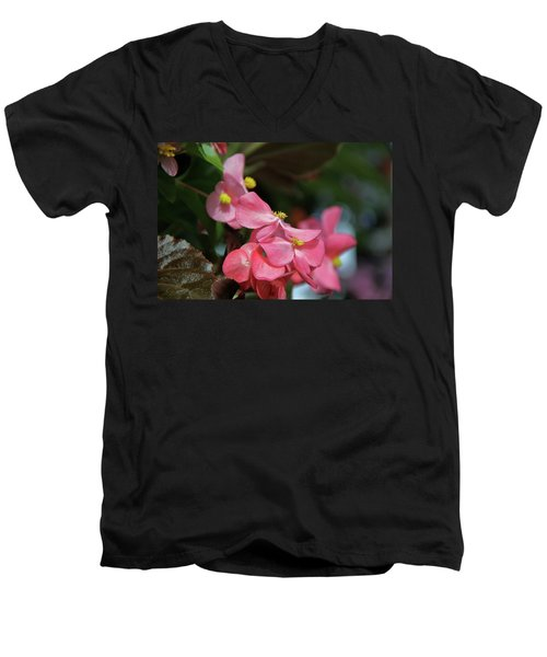 Begonia Beauty Men's V-Neck T-Shirt by Ed  Riche