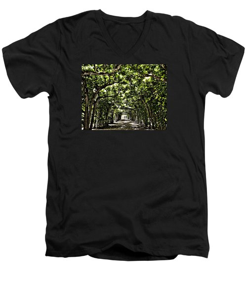 Men's V-Neck T-Shirt featuring the photograph Believes ... by Juergen Weiss