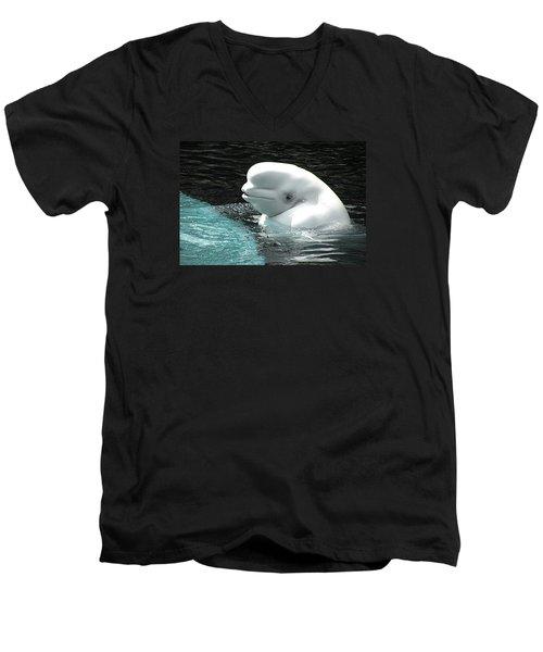 Beluga Whale Men's V-Neck T-Shirt