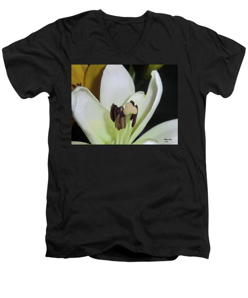Beyond Perfection Men's V-Neck T-Shirt