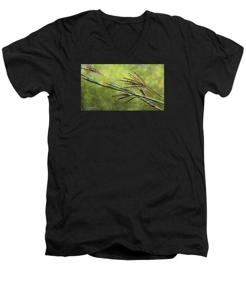 Big Bluestem In Bloom Men's V-Neck T-Shirt by Bruce Morrison