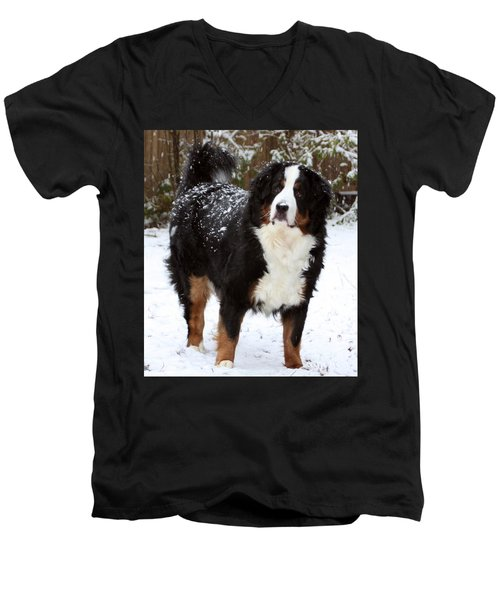 Snow Happy Men's V-Neck T-Shirt
