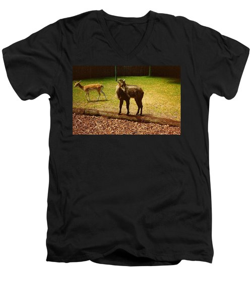 Men's V-Neck T-Shirt featuring the photograph Billy Goat Keeping Lookout by Amazing Photographs AKA Christian Wilson