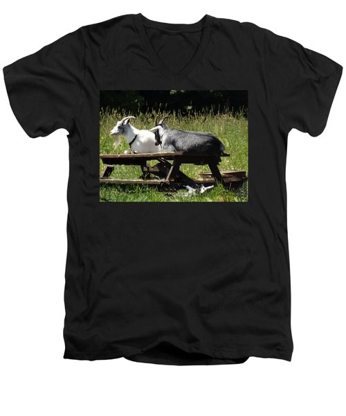 Billy Goats Picnic Men's V-Neck T-Shirt