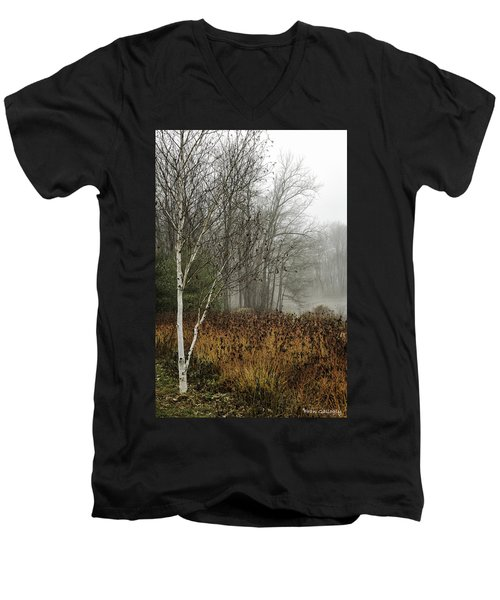 Birch In Winter Men's V-Neck T-Shirt