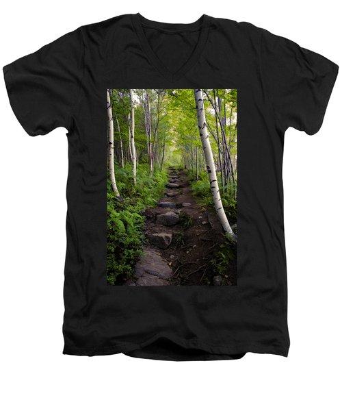 Birch Woods Hike Men's V-Neck T-Shirt
