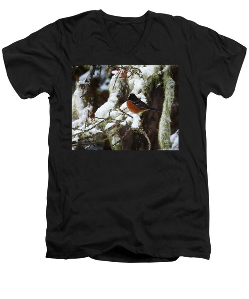 Bird In Snow Men's V-Neck T-Shirt