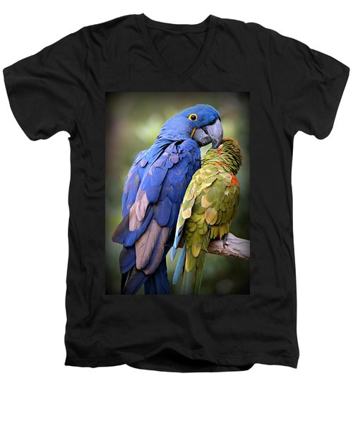 Birds Of A Feather Men's V-Neck T-Shirt by Stephen Stookey