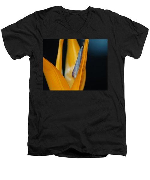 Men's V-Neck T-Shirt featuring the photograph Birds Of Paradise by Matt Harang