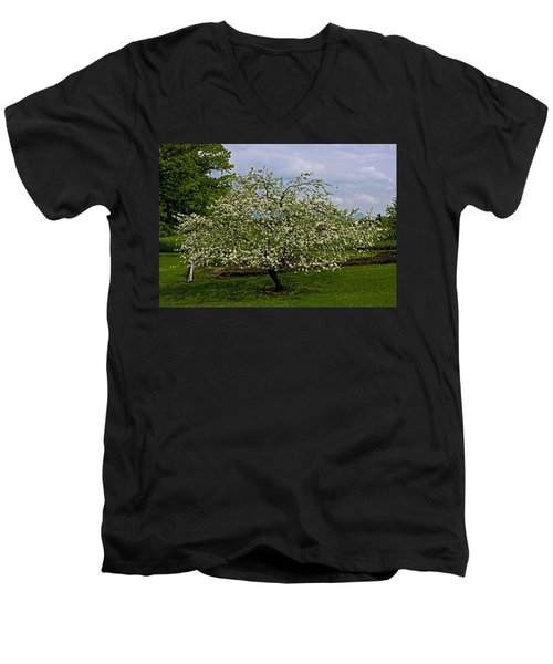 Men's V-Neck T-Shirt featuring the painting Birth Of Apples by John Haldane