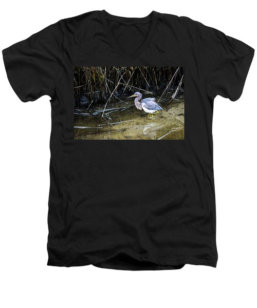 Bittern At Dusk  Men's V-Neck T-Shirt