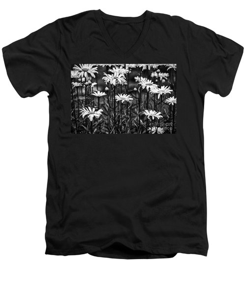 Black And White Daisies Men's V-Neck T-Shirt by Mary Carol Story