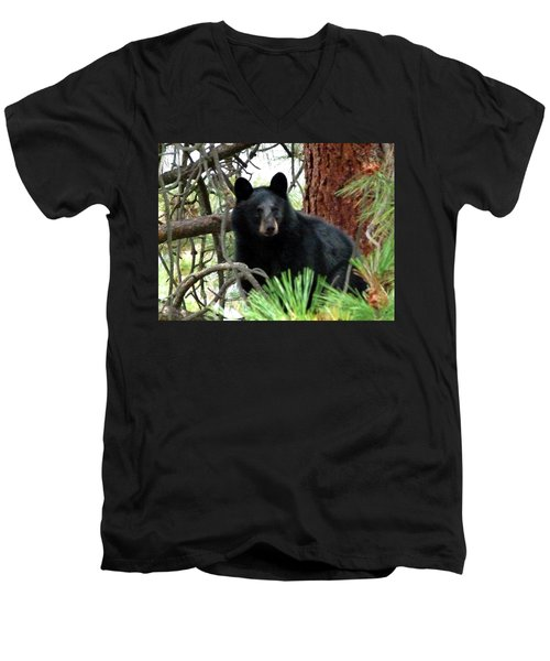 Black Bear 1 Men's V-Neck T-Shirt