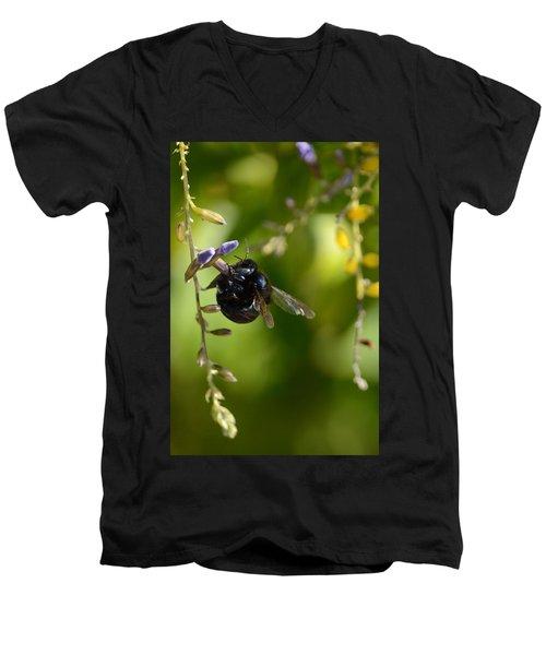 Black Bumblebee Men's V-Neck T-Shirt by Debra Martz