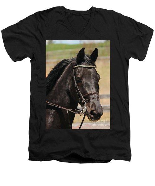 Black Mare Portrait Men's V-Neck T-Shirt