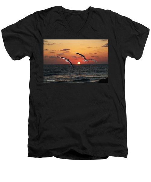 Black Skimmers At Sunset Men's V-Neck T-Shirt by Tom Janca