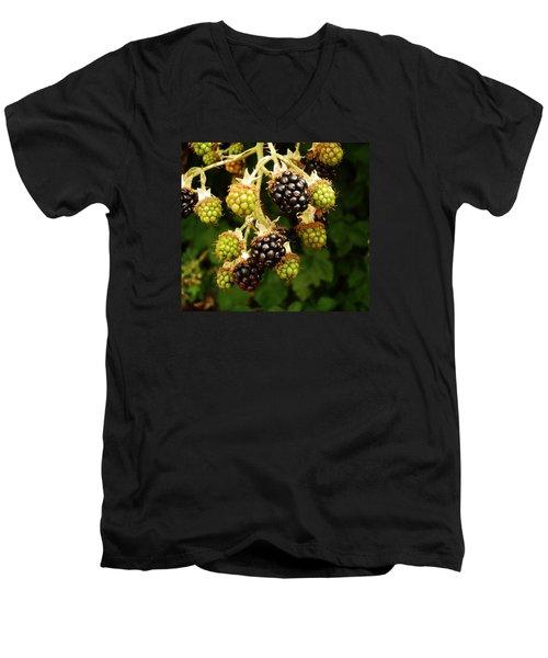 Blackberries Men's V-Neck T-Shirt by VLee Watson