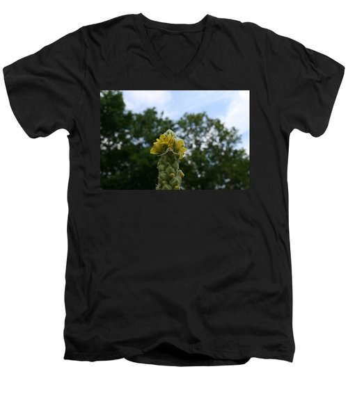Men's V-Neck T-Shirt featuring the photograph Blended Golden Rod Crab Spider On Mullein Flower by Neal Eslinger