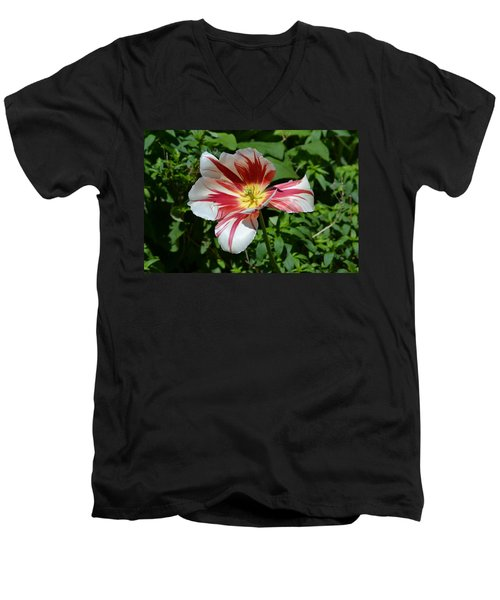 Men's V-Neck T-Shirt featuring the photograph Bloom by Tara Potts