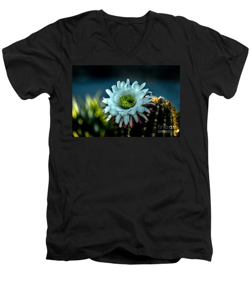 Blooming Argentine Giant Men's V-Neck T-Shirt by Robert Bales