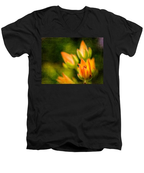 Blooming Succulents IIi Men's V-Neck T-Shirt