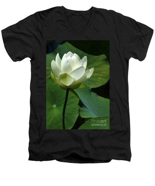 Blooming White Lotus Men's V-Neck T-Shirt