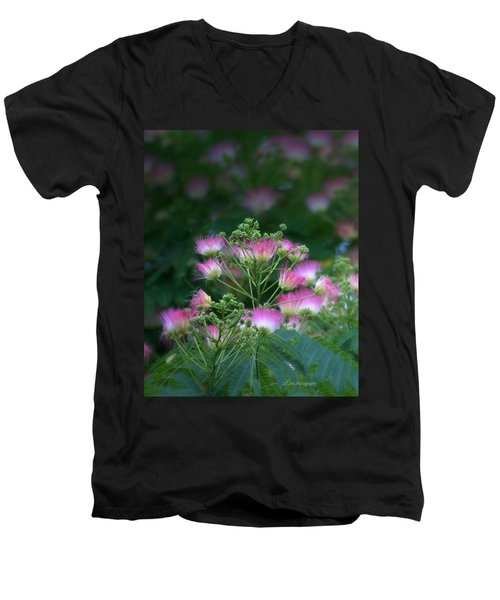 Blooms Of The Mimosa Tree Men's V-Neck T-Shirt by Jeanette C Landstrom