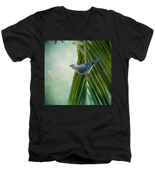 Blue Grey Tanager On A Palm Tree Men's V-Neck T-Shirt by Peggy Collins
