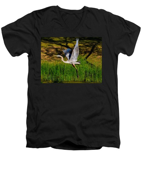 Blue Heron In Flight Men's V-Neck T-Shirt
