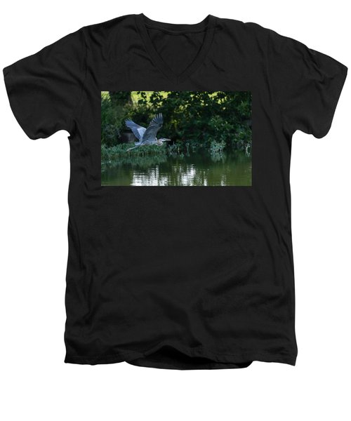 Blue Heron Take-off Men's V-Neck T-Shirt