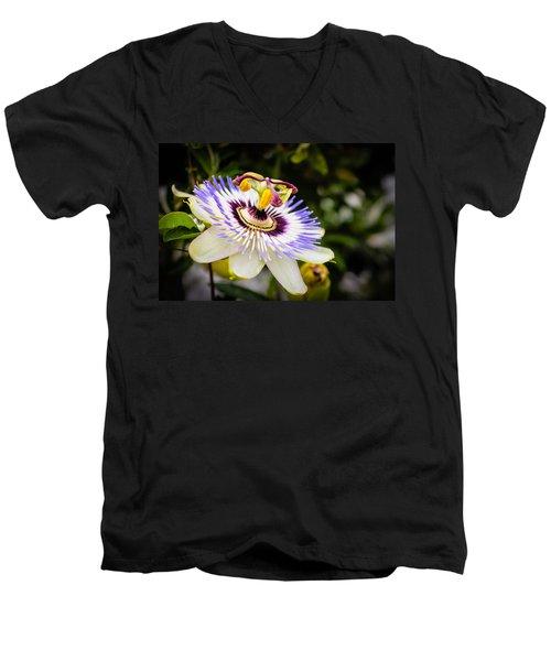 Blue Passion Flower Men's V-Neck T-Shirt