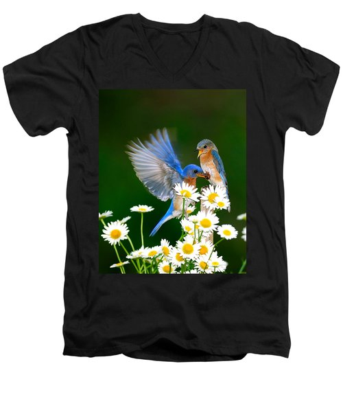 Bluebirds And Daisies Men's V-Neck T-Shirt