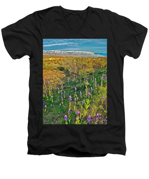 Bluebonnets And Creosote Bushes In Big Bend National Park-texas Men's V-Neck T-Shirt