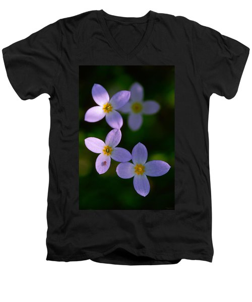 Men's V-Neck T-Shirt featuring the photograph Bluets With Aphid by Marty Saccone