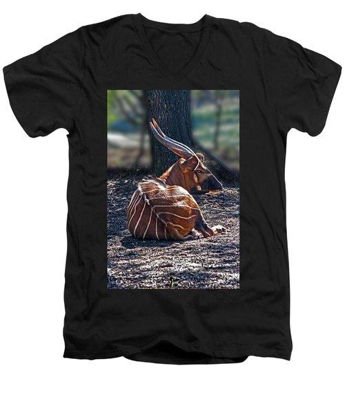Bongo Men's V-Neck T-Shirt
