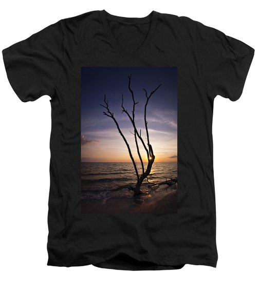 Men's V-Neck T-Shirt featuring the photograph Bonita Beach Tree by Bradley R Youngberg