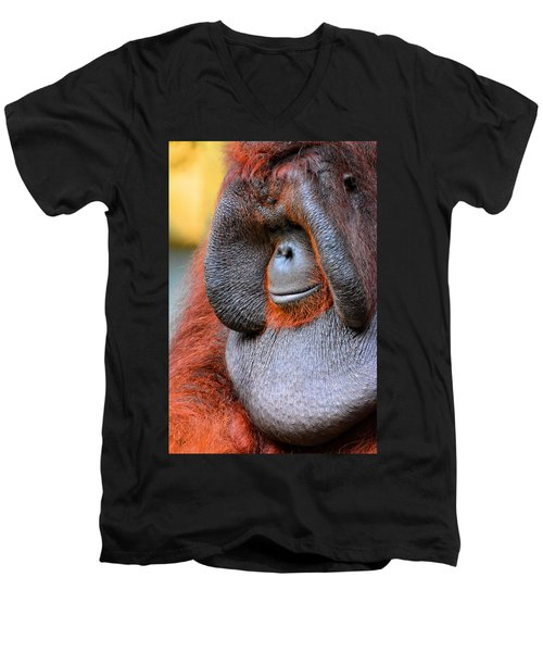 Bornean Orangutan Vi Men's V-Neck T-Shirt by Lourry Legarde