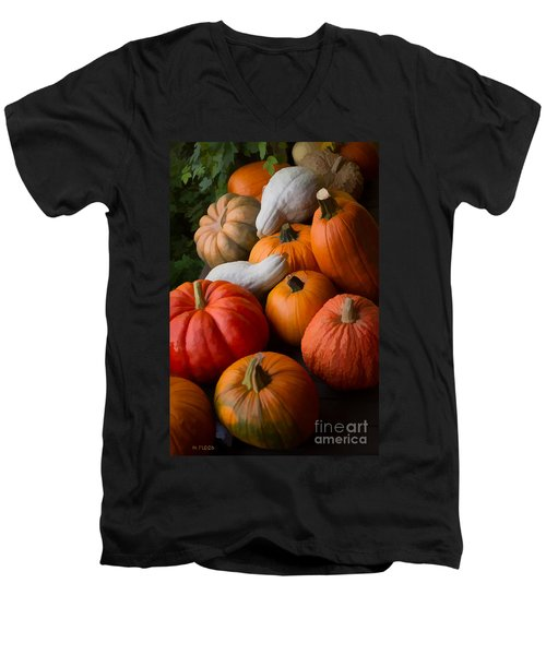 Men's V-Neck T-Shirt featuring the photograph Bountiful Harvest by Michael Flood