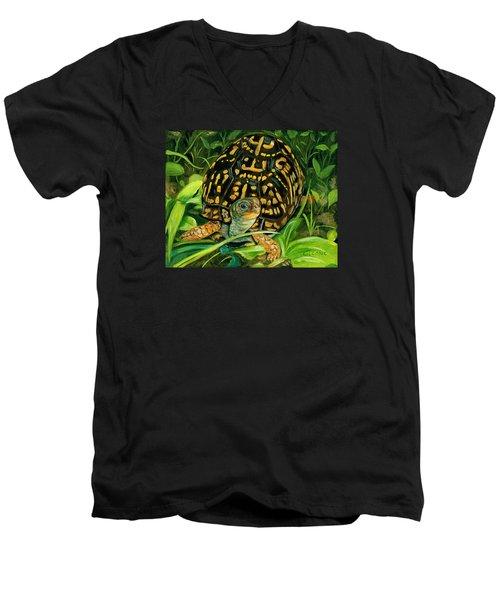 Box Turtle Men's V-Neck T-Shirt