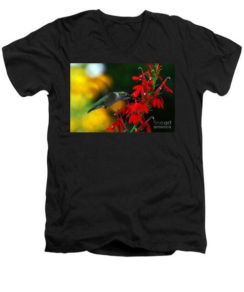 Boy Am I Hungry Men's V-Neck T-Shirt