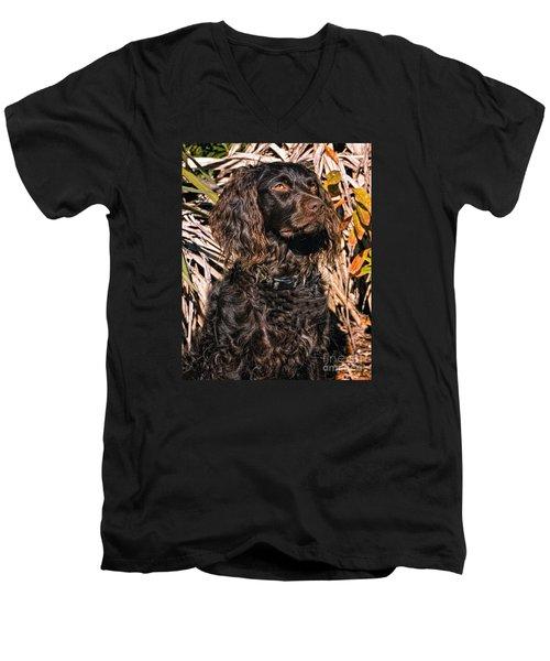 Boykin Spaniel Portrait Men's V-Neck T-Shirt by Timothy Flanigan