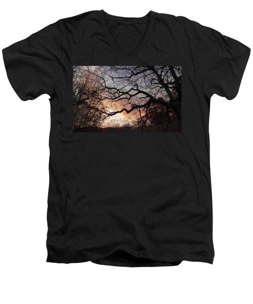 Branches Men's V-Neck T-Shirt by Wayne King