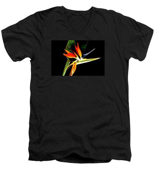 Brilliant Men's V-Neck T-Shirt by Diane Merkle